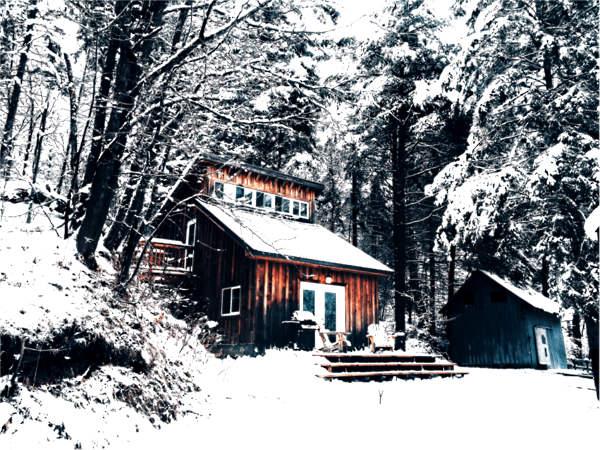 Potential entfalten - Baumhaus