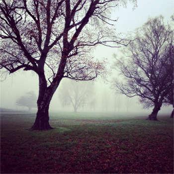 Potential entfalten - Herbstlandschaft
